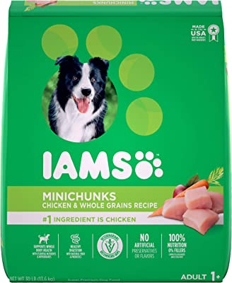 IAMS PROACTIVE HEALTH Minichunks Dry Dog Food