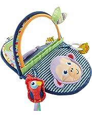 Fisher-Price DYC85 - Äffchen Spiegel, Babyspielzeug und Motorikspielzeug für die Bauchlage, zusammenfaltbar, Baby Spielzeug ab Geburt
