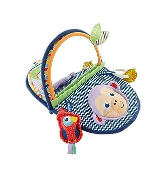 Fisher-Price DYC85 - Äffchen Spiegel, Babyspielzeug und Motorikspielzeug für die Bauchlage, zusammenfaltbar, Baby Spielzeug a