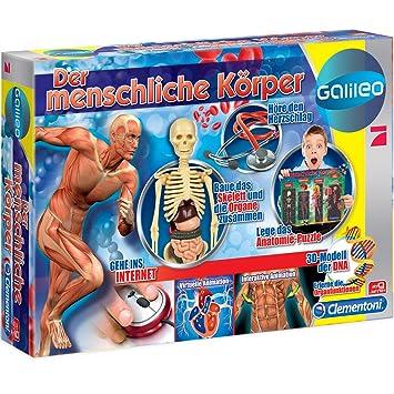 Galileo - Der menschliche Körper mit Skelett und Organe sowie DNA ...