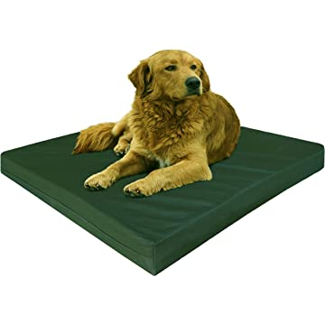 powerful Dogbed4less Orthopedic