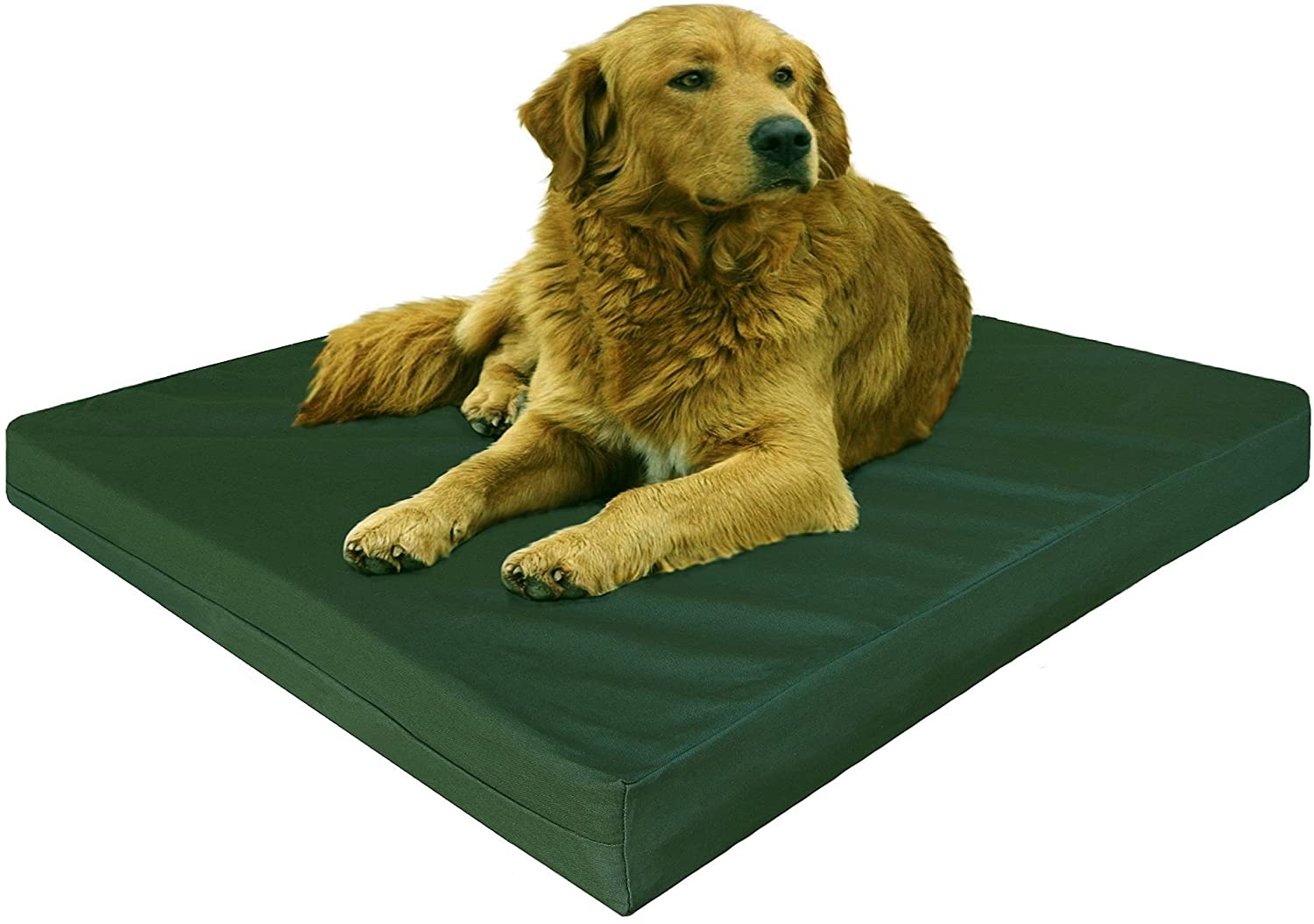 Extra large orthopedic dog beds best price - Amazon Com Dogbed4less Gel Cooling Memory Foam Dog Bed With Durable Washable Canvas Cover And Waterproof Internal Liner Extra 2nd Replacement Case