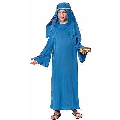 Forum Novelties Biblical Times Shepherd Blue Costume Robe, Child Medium: Toys & Games