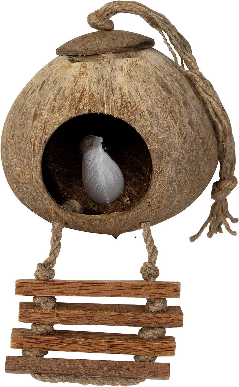 Casa de pájaros para Colgar de Coco, Juguetes | Cabañas y Juguetes para pájaros Naturales escondidos, entretener y Seguro para Todo Tipo de Aves (Nido de Coco con Escalera y Cama)