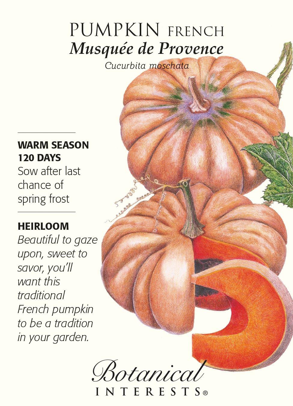 "French Pumpkin ""Musquee de Provence"" Heirloom Seeds"
