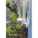 JARDLI Pollen Glass CO2 Diffuser for Aquarium Planted Tank