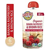Earth's Best Organic Stage 2, Banana, Raspeberry & Brown Rice, 4.2 Ounce Pouch (Pack of 6)