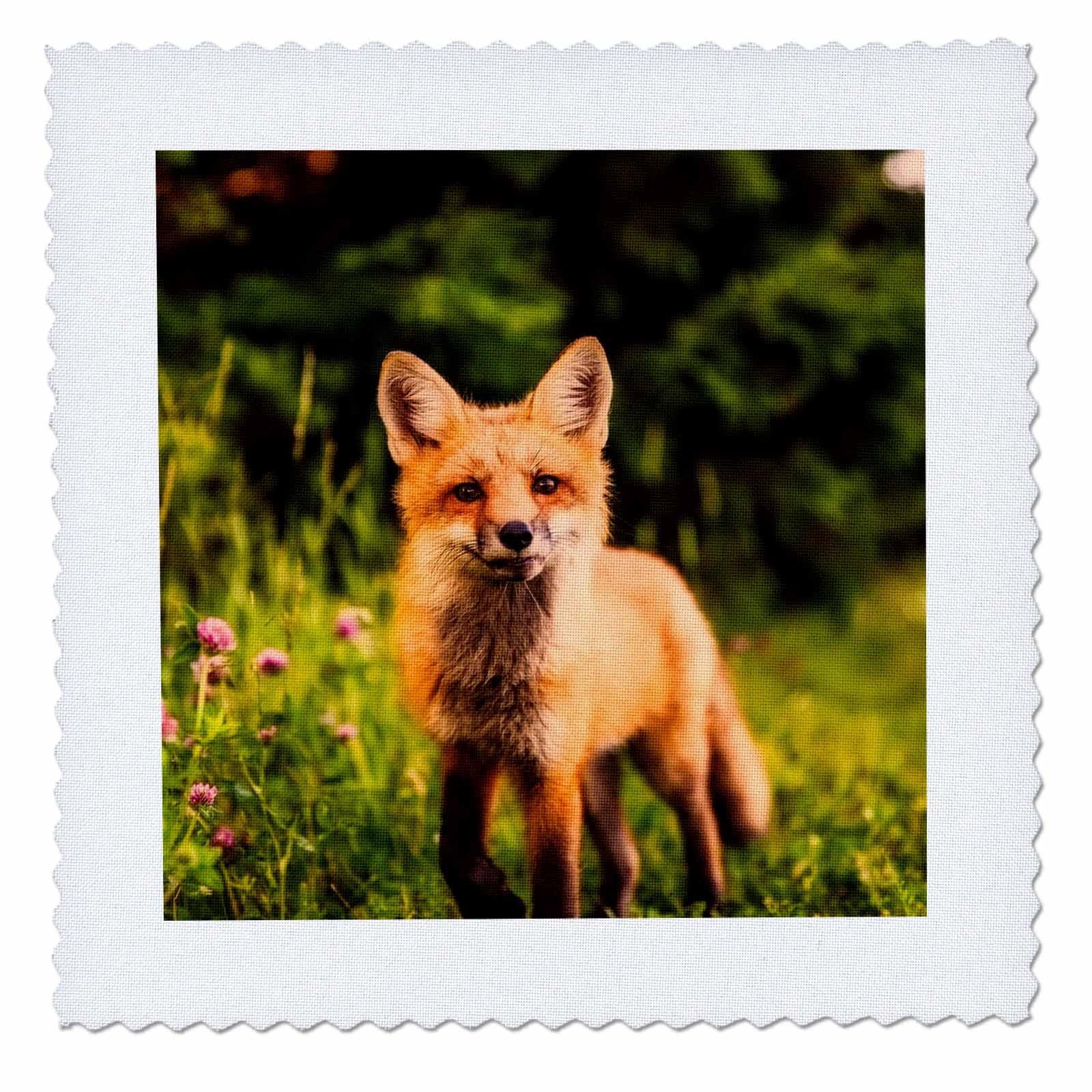 3dRose Sven Herkenrath Animals - A Fox In The Woods Portrait Animal Fox - 18x18 inch quilt square (qs_262457_7)