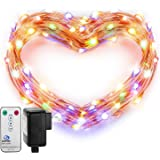Fairy Lights, DecorNova Copper Wire 120 LED 39.4 Feet Starry String Lights Firefly Lights with 3V Adapter and Remote for Holiday Christmas Party Bedroom Wedding Decorations, Multi-Color