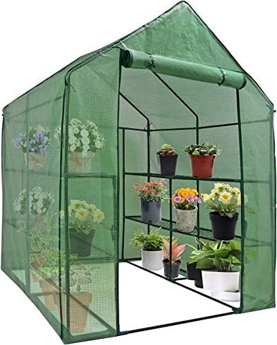 SAVICOS Walk-in Greenhouse with Observation Windows Large Greenhouse Indoor Outdoor with 6 Sturdy Shelves-Grow Plants,Grow Plants, Seedlings, Herbs, or Flowers in Any Season-Gardening Rack