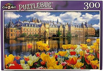 300 Piece Jigsaw Puzzle Puzzlebug Fast