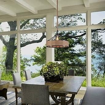 Amazon.com: Raekor - Lámpara de techo con marco de metal de ...