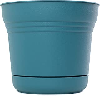 product image for Bloem SP1248-6 6-Pack Saturn Planter, 12-Inch, Turbulent