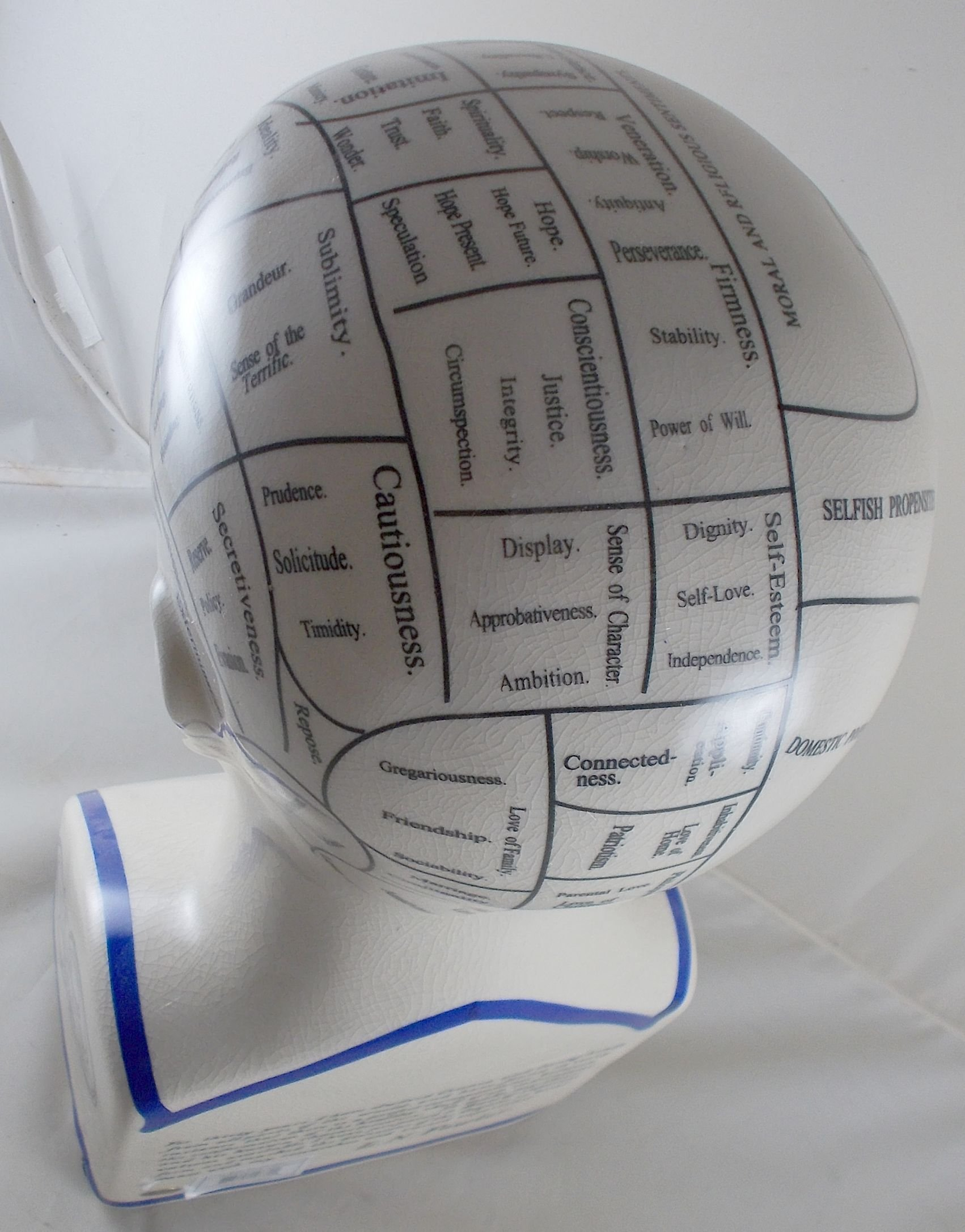 L.N. Fowler Phrenology Head Statue by Magoo's General Store (Image #7)