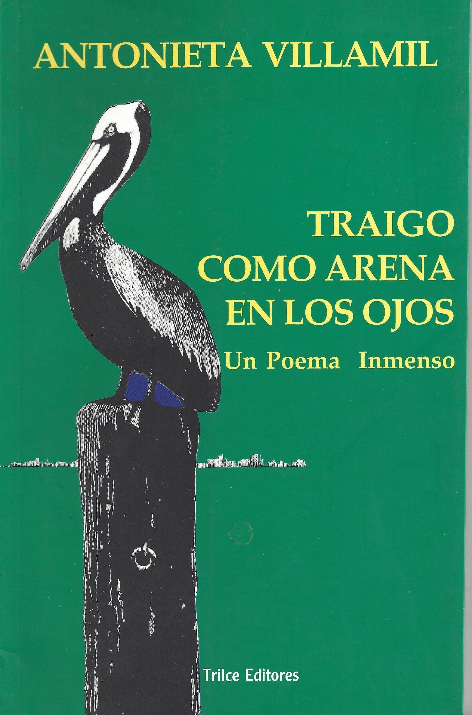 Title Traigo Como Arena En Los Ojos Un Poema Inmenso Spa