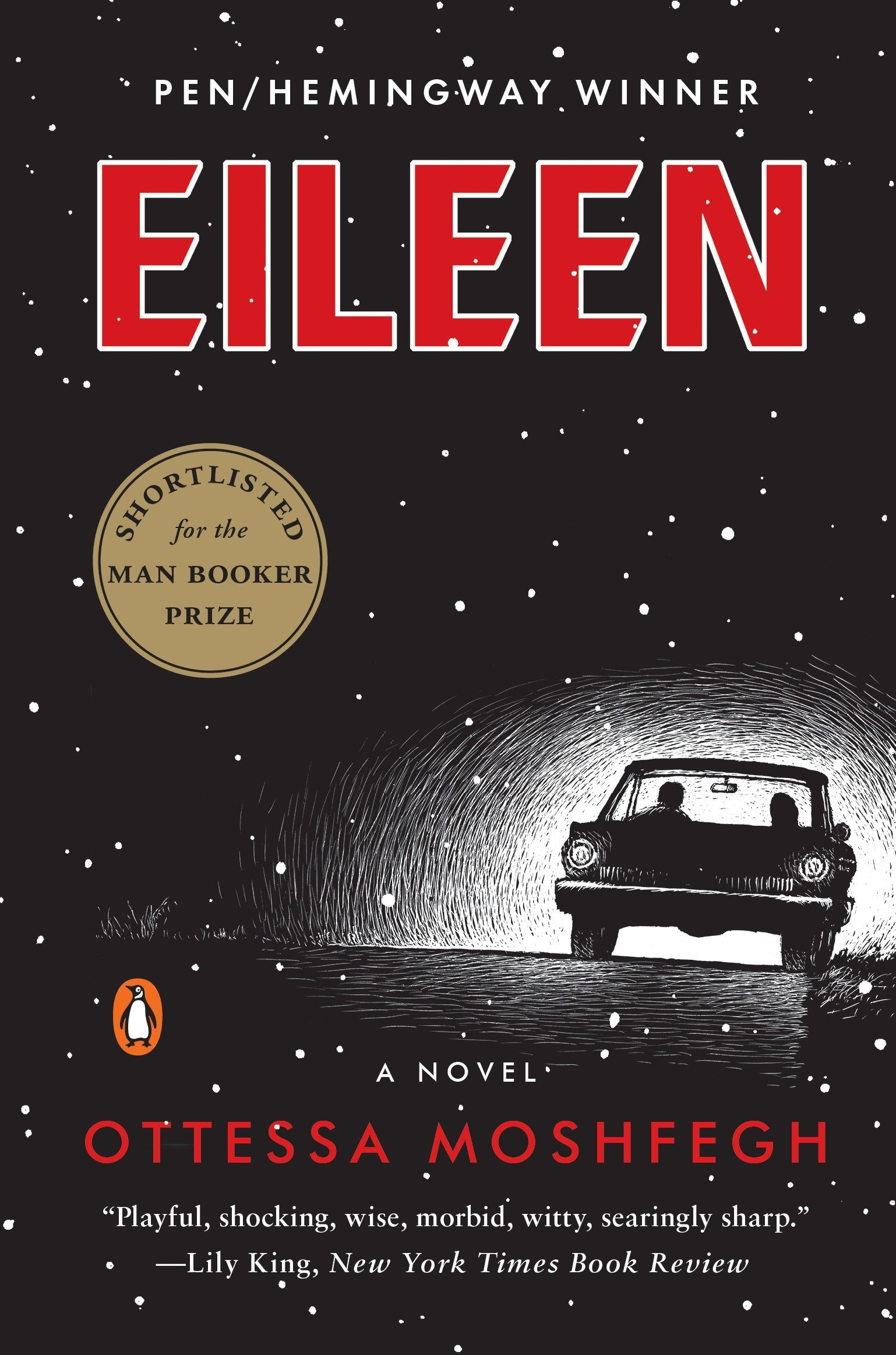 Image result for eileen book