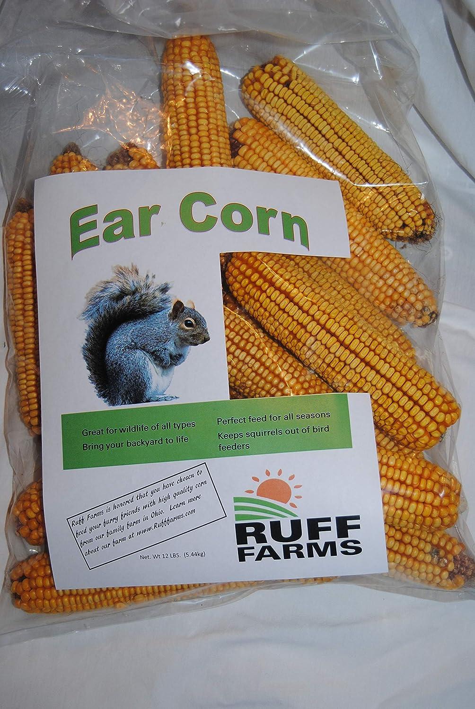 Ruff Farms Squirrel Corn, Ear Corn, 12#Bag - Approx 24 Ears