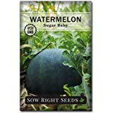 Sow Right Seeds - Sugar Baby Watermelon Seed for Planting - Non-GMO Heirloom Packet with Instructions to Plant a Home Vegetable Garden - Great Gardening Gift (1)