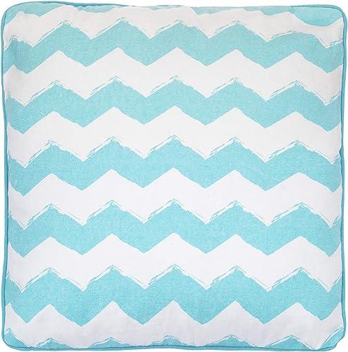 Levtex Home Beach Break Scrnpt Pillow, Coastal, 100 Cotton, Aqua, White