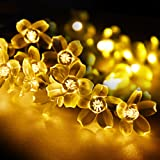 Amazon Price History for:String Lights, LightsEtc 15.7ft 20 LED Solar Warm White Blossom Lighting Waterproof Flower Fairy Lights for Christmas Holiday Party Indoor Outdoor Houses Garden