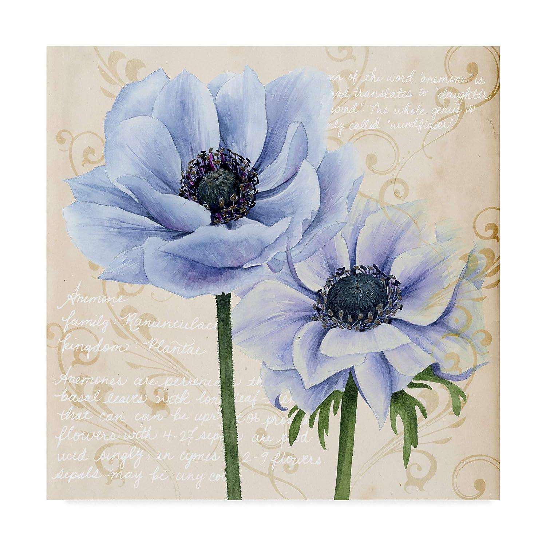 Watch Cari Flowers USA video