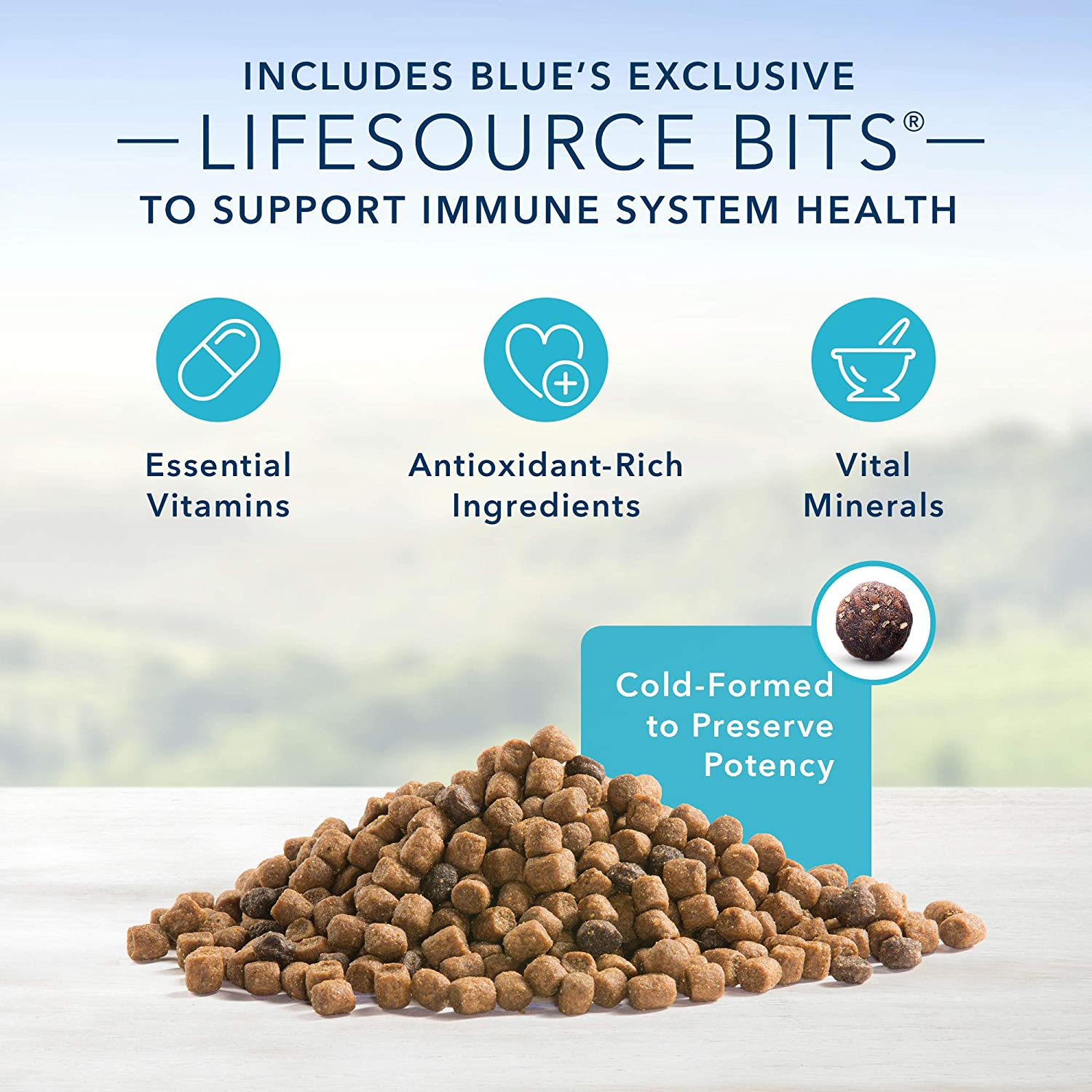 Blue Buffalo Indoor Health Natural Adult Dry Cat Food, Chicken & Brown Rice 15-lb : Dry Pet Food : Pet Supplies