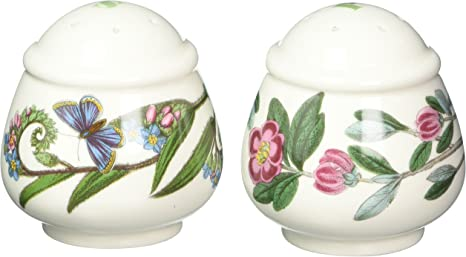 Early 1900 TV  Rose Pattern Salt and Pepper Set