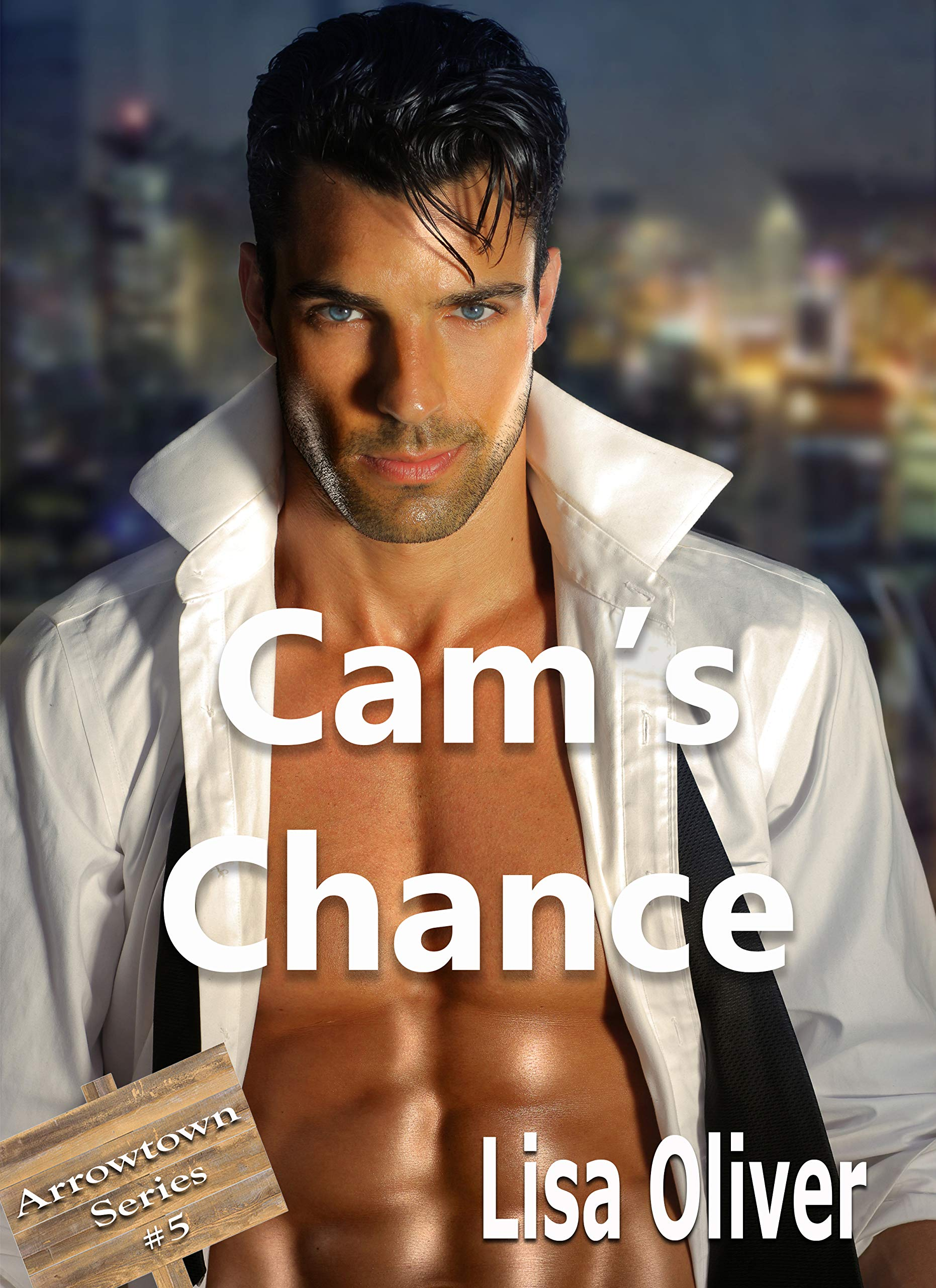 Cam's Chance  Arrowtown Series Book 5   English Edition