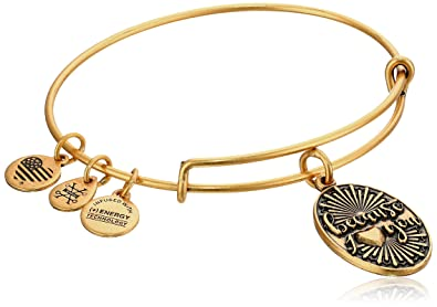 Alex and Ani Love IV Rafaelian Gold Charm Bracelet hkIj4se
