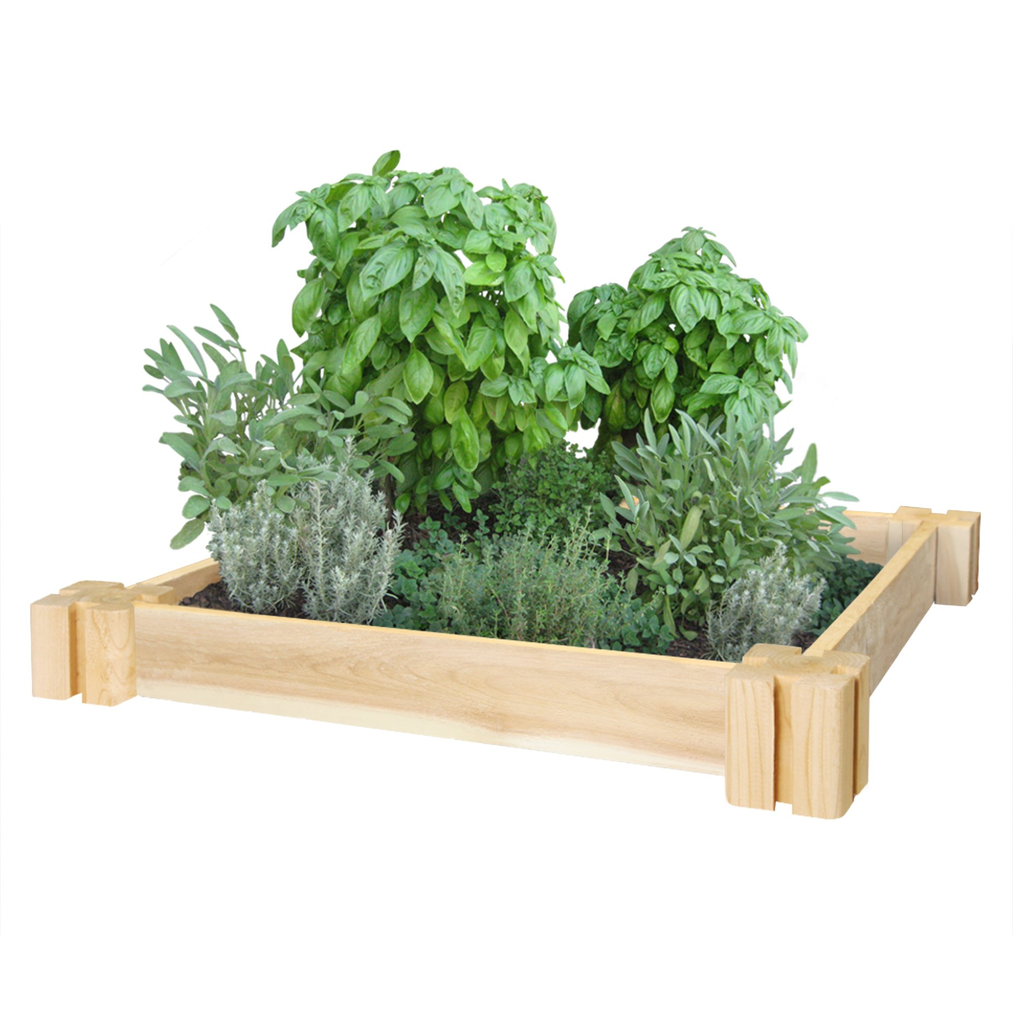 Greenes Fence RC2GH2 Cedar Herb Garden, 2'. x 2'. x 3.5 in, Natural
