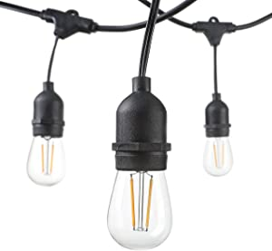 Hudson Lighting Outdoor String Lights - LED - for Patio, Garden, Deck, Backyard, Gazebo - 48 Feet - S14 – 15 Hanging Sockets - E26 Base - 2 Watt