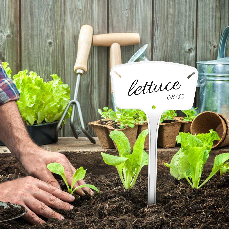 HOMENOTE 25 Etiquetas de plástico para Plantas, tamaño Grande ...