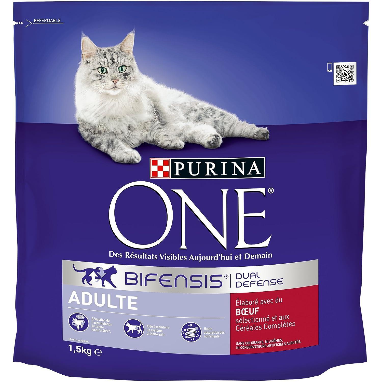 ONE Purina Pienso para Gatos Adulto Talla & Sabor Elegir 1,5 kg ...