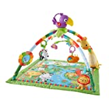 Amazon Price History for:Fisher-Price Music and Lights Deluxe Gym, Rainforest