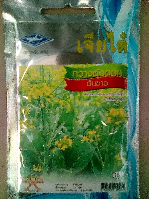 GETSO Las Semillas del Paquete: 4350 Semillas de Colza Comestible ...