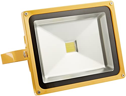 Lind Equipment LE965LEDC Rechargeable Bright LED Portable Flood Light Head Only, 30W