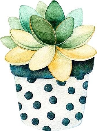"Amazon.com: Divine Designs Pretty Watercolor Potted Succulent Cactus Art  Vinyl Decal Sticker (4"" Tall, 1): Automotive"