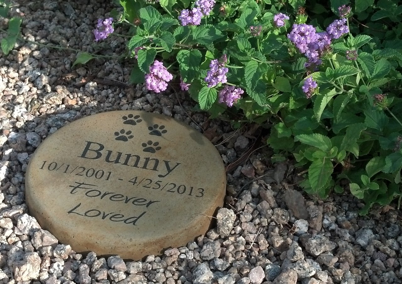 Personalized Engraved Pet Memorial Step Stone 7.5'' Diameter 'Forever Loved