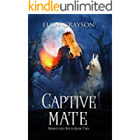 Captive Mate (Mismatched Mates Book 2) book cover