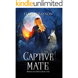 Captive Mate (Mismatched Mates Book 2)