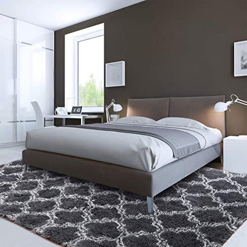 LOCHAS Luxury Velvet Shag Area Rug Modern Indoor Plush Fluffy Rug