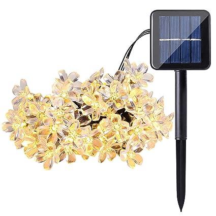 Amazon.com: ECOWHO - Guirnalda de luces solares para ...