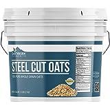 Steel Cut Oats, 1 Gallon Bucket (6 LBS) by Earthborn Elements, Also Called Irish Oatmeal, High Quality Breakfast…