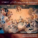 J.S.バッハ : 世俗カンタータ Vol.10 [完結] / 鈴木雅明 | バッハ・コレギウム・ジャパン (J.S. Bach : Cantatas of contentment / Masaaki Suzuki | Bach Collegium Japan) [SACD Hybrid] [Import] [日本語帯・解説・対訳付]