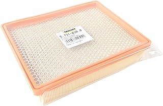 Kärcher 5.731-020 - Filtro pieghettato piatto