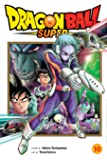 Dragon Ball Super, Vol. 10 (Volume 10)