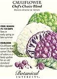 Chef's Choice Blend Cauliflower Seeds - 500 mg