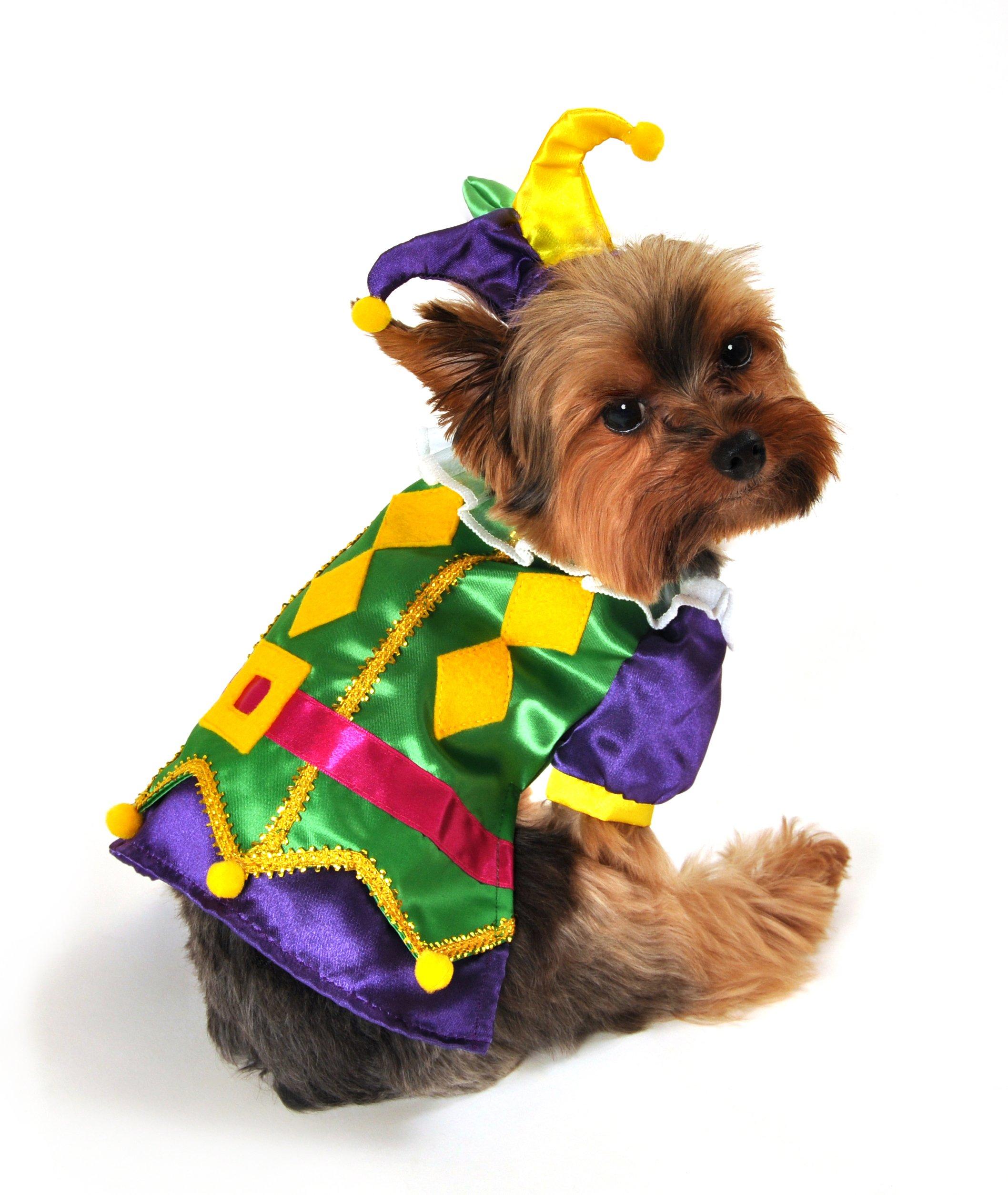 Anit Accessories AP1089-M Royal Harlequin Dog Costume