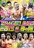 "DRAGON GATE 2013""春の陣"" [DVD]"
