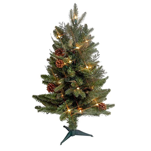 gkibethlehem lighting green river spruce christmas pre lit with 35 clear mini lights 2 2499 at amazoncom amazoncom gki bethlehem lighting pre lit